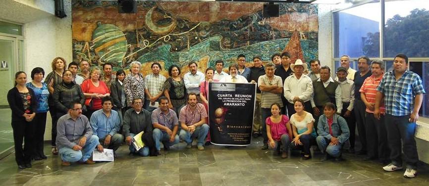 Cuarta Reunión del Grupo de Enlace en la Universidad Autónoma Metropolitana - Iztapalapa